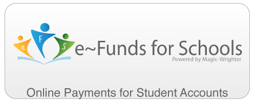 Online Payments: Online Payments with eFunds
